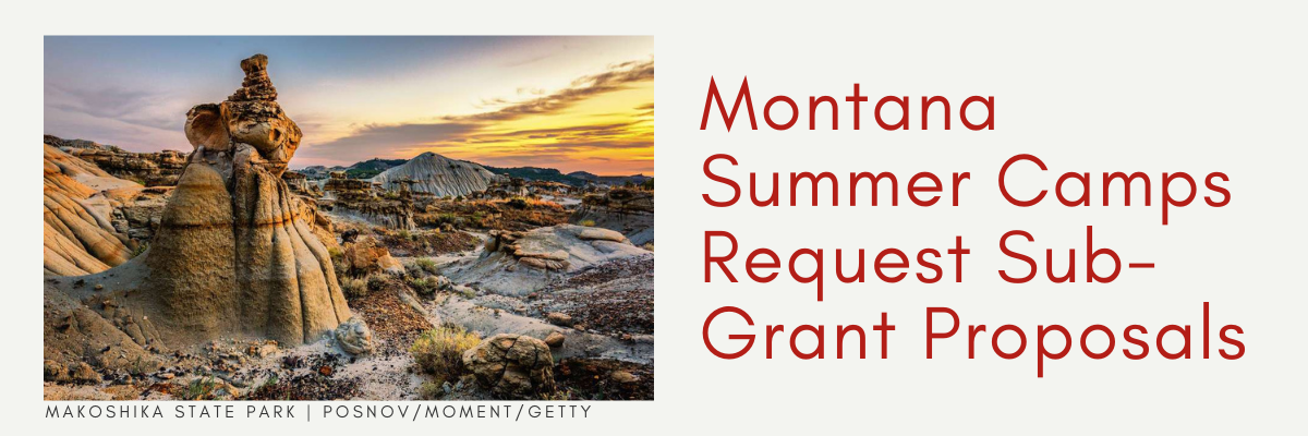 Complete this Request for Sub Grant Proposals to receive funding for your summer camp for 2021